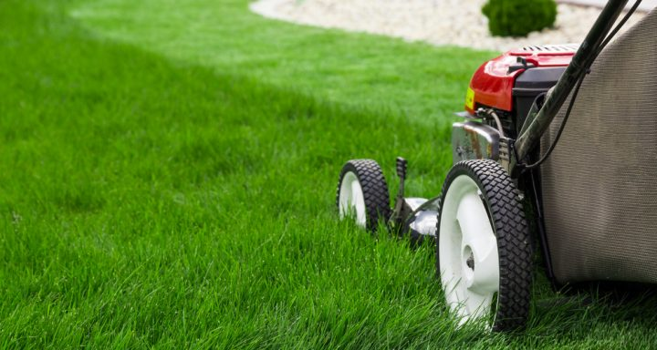 Do's and Don'ts of Lawn Care